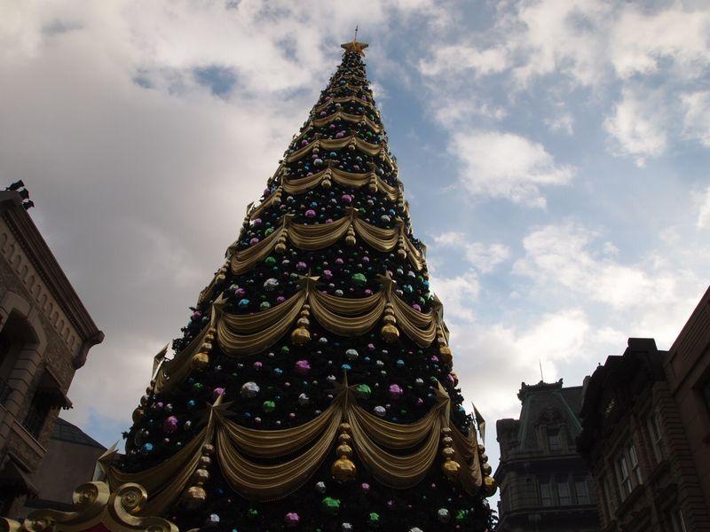 クリスマス満喫24日。_a0050302_1312918.jpg