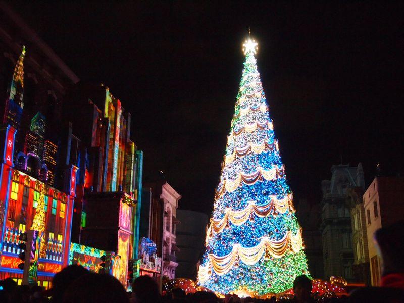 クリスマス満喫24日。_a0050302_1325533.jpg