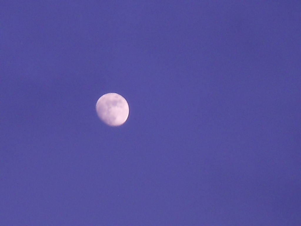 moon Light  ~  christmas  ☆_f0146802_23102100.jpg
