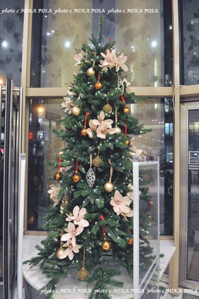 ☆Merry Christmas☆_b0164803_953218.jpg