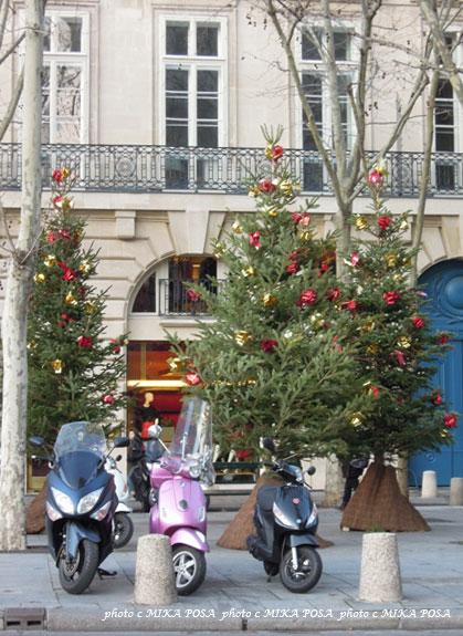 ☆Merry Christmas☆_b0164803_954849.jpg