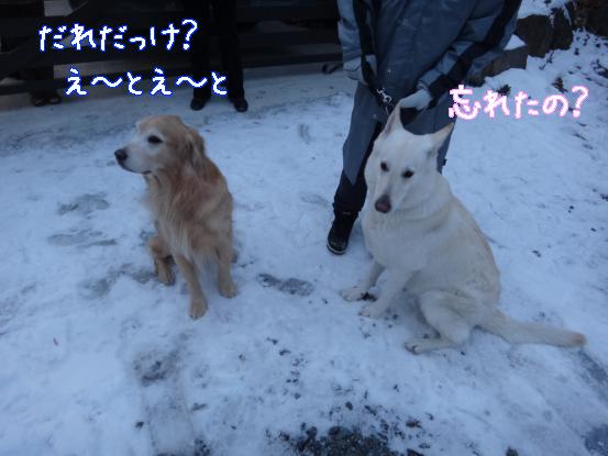 五郎の記憶ファイル_f0064906_15585377.jpg