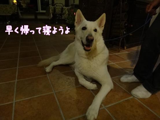 五郎の記憶ファイル_f0064906_1641290.jpg