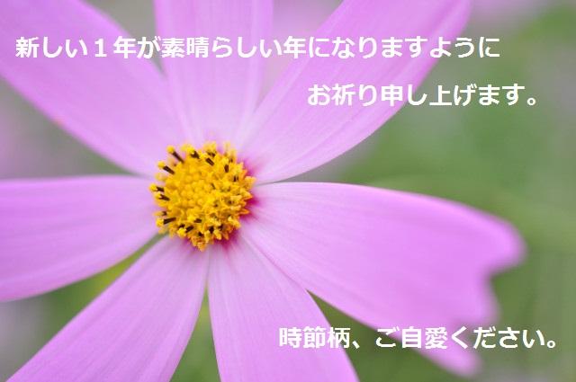 f0046614_12543253.jpg