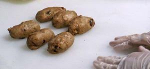 人気ブーランジェリー風見鶏 11月の製パン講習会-シュトレン&パネトーネ_b0133017_16323543.jpg