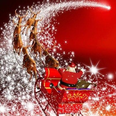 メリークリスマス☆彡_f0015517_0413826.jpg