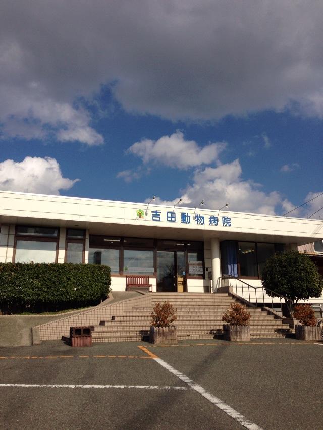 マネちゃんの病院_f0015517_0515550.jpg