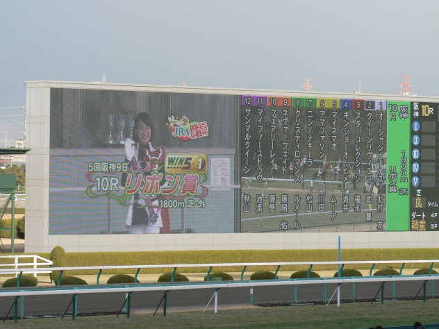 【速報】宝塚ハーフマラソン&JRA「リボン賞」_a0218340_1634051.jpg