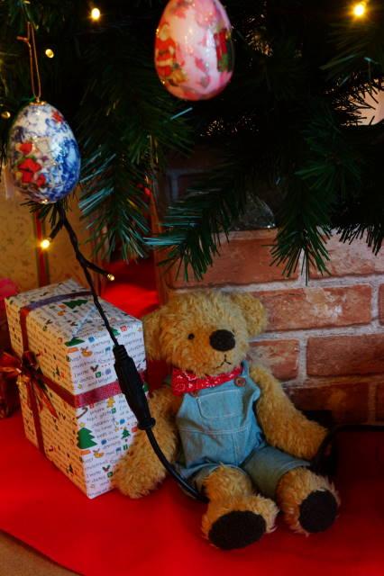 クリスマス・プレゼント_a0257652_14421730.jpg