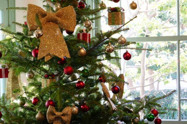 クリスマス・プレゼント_a0257652_17225638.jpg