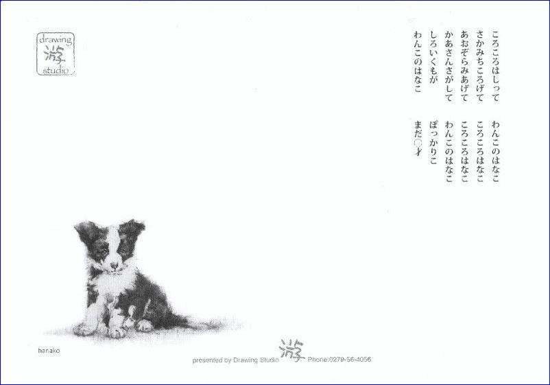 『 2013年 卓上 カレンダー 「わんこのはなこまだ0才」 』_f0159856_9151020.jpg