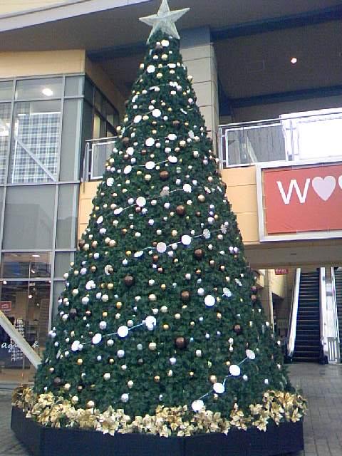 Merry X'mas♪♪_e0114857_951361.jpg