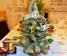 Frohe Weihnachten_e0195766_641340.jpg