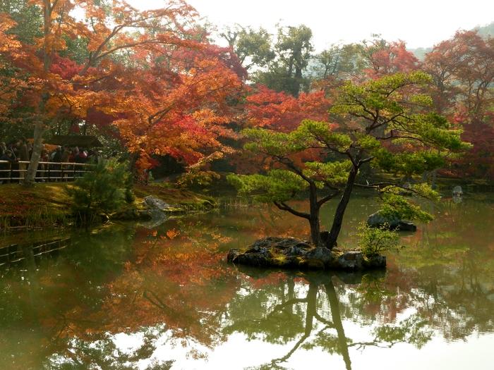 晩秋の京都 27_b0093088_7462180.jpg