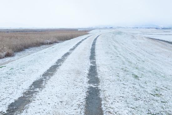 雪_b0253991_18451658.jpg