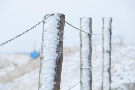雪_b0253991_18454245.jpg