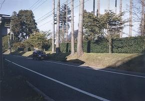 a0137997_1959596.jpg