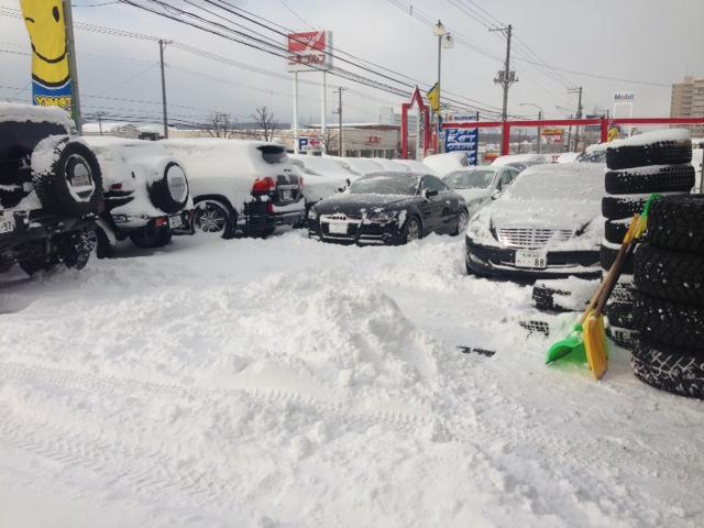 吹雪で自動ドアが∑(゚Д゚)壊れた!_b0127002_1048712.jpg