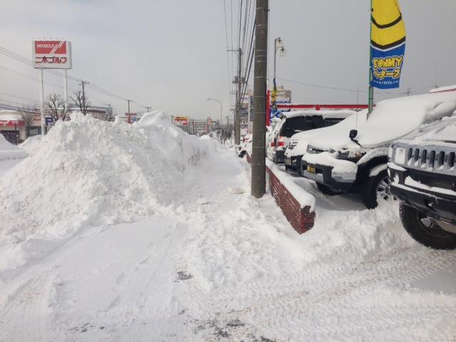 吹雪で自動ドアが∑(゚Д゚)壊れた!_b0127002_1048739.jpg