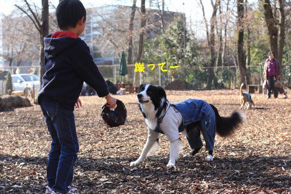 冬休みの保育園_d0224111_128096.jpg
