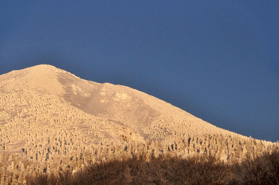雪景色の酸ヶ湯_e0162117_1103772.jpg