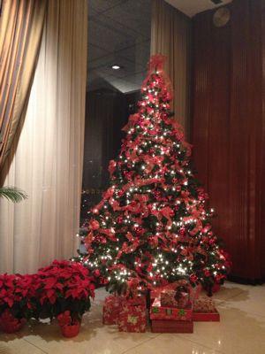 ❤ クリスマスのおもてなし ❤_f0095325_12193758.jpg