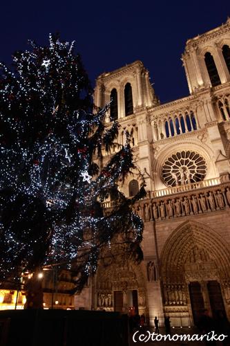 ノートルダム寺院のクリスマス_c0024345_934546.jpg