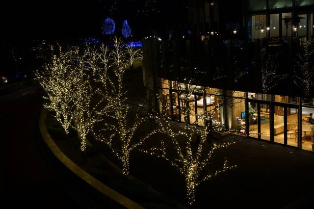 クリスマスイルミネーション_a0257652_17345754.jpg