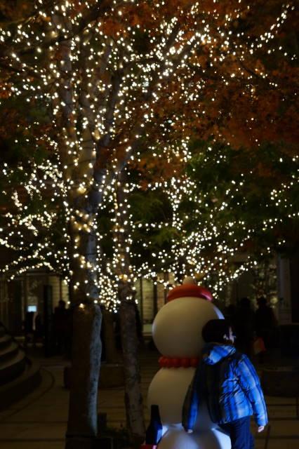 クリスマスイルミネーション_a0257652_17355097.jpg