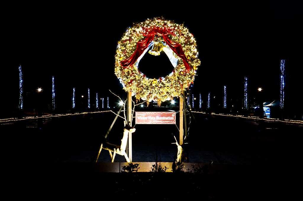 昭和記念公園のイルミ1_f0044056_19591230.jpg