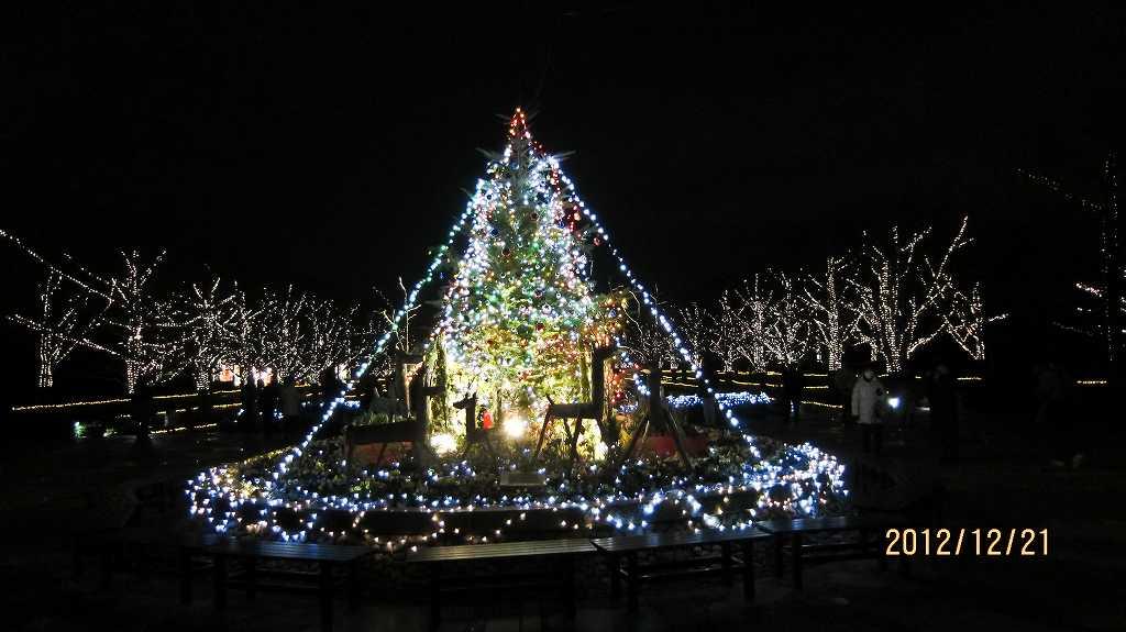 昭和記念公園のイルミ1_f0044056_2005598.jpg