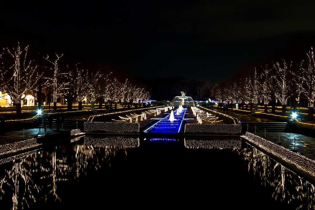 昭和記念公園のイルミ1_f0044056_201354.jpg