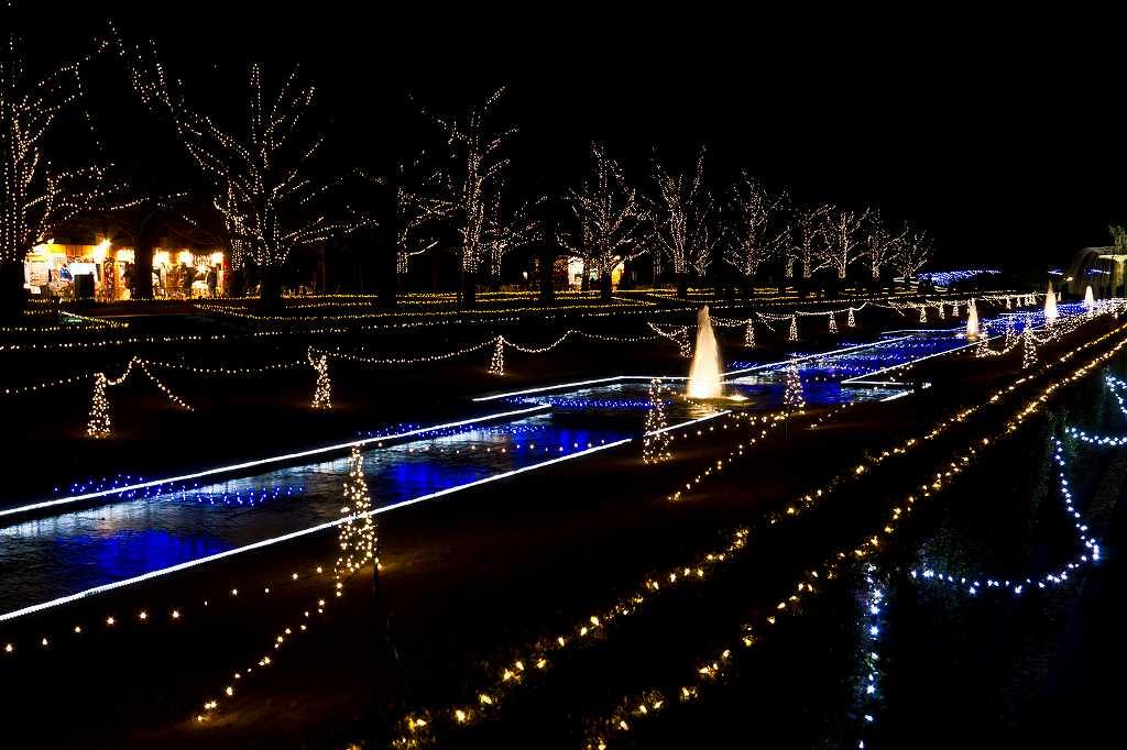昭和記念公園のイルミ1_f0044056_2014520.jpg