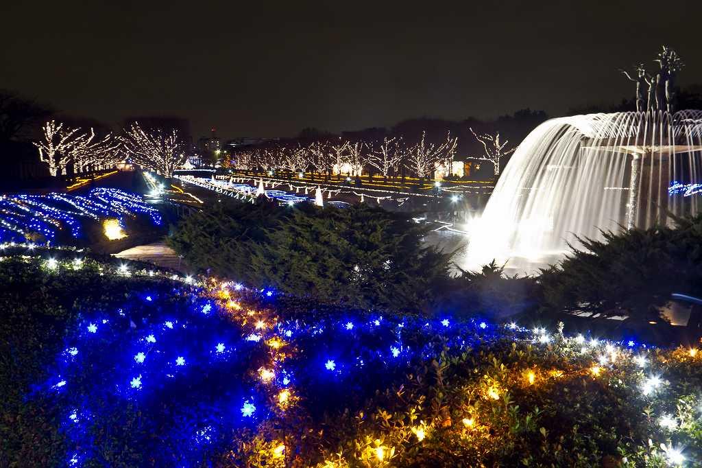 昭和記念公園のイルミ1_f0044056_2035837.jpg
