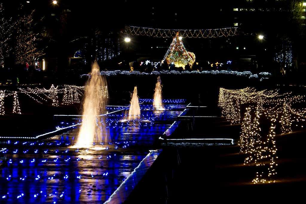 昭和記念公園のイルミ1_f0044056_203655.jpg