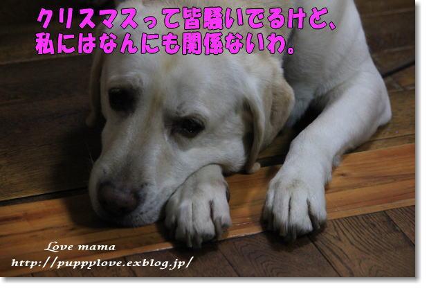 b0136683_9271724.jpg