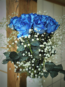 Blue Rose (青い薔薇)_f0077789_15452984.jpg