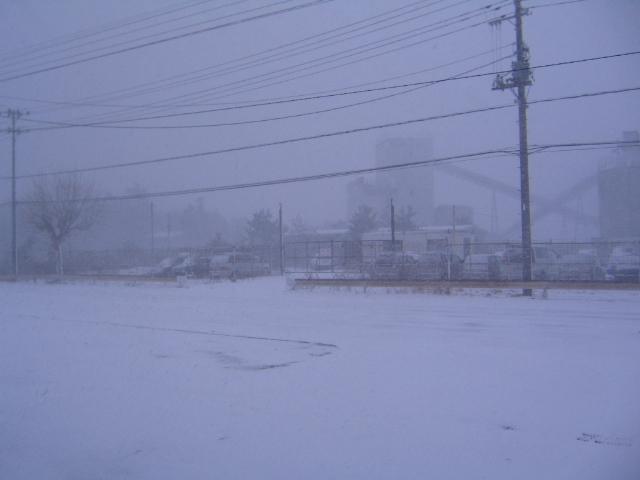 今日は猛吹雪です。_a0291590_9375992.jpg