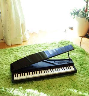 音楽で結ばれた両親からの、クリスマスプレゼント★_d0224894_21341437.jpg