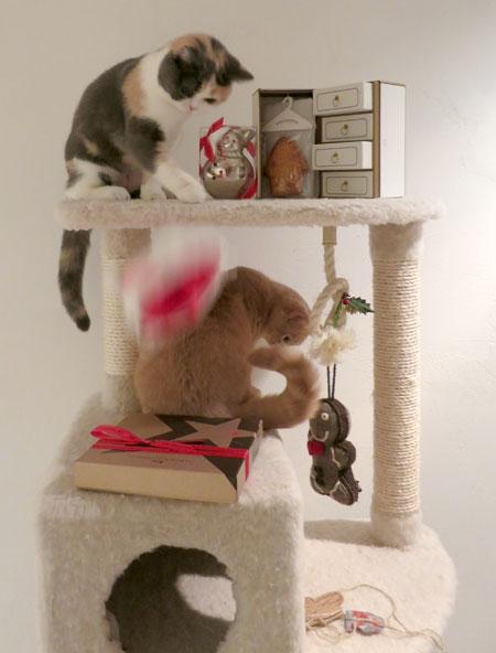 Merry Christmas!_c0108595_0593468.jpg