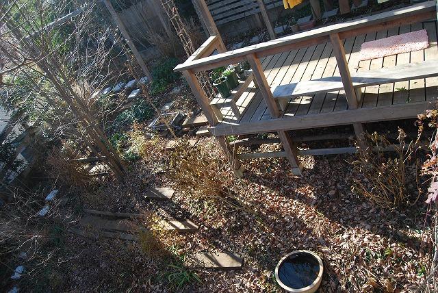 12月の庭…_c0124100_05672.jpg