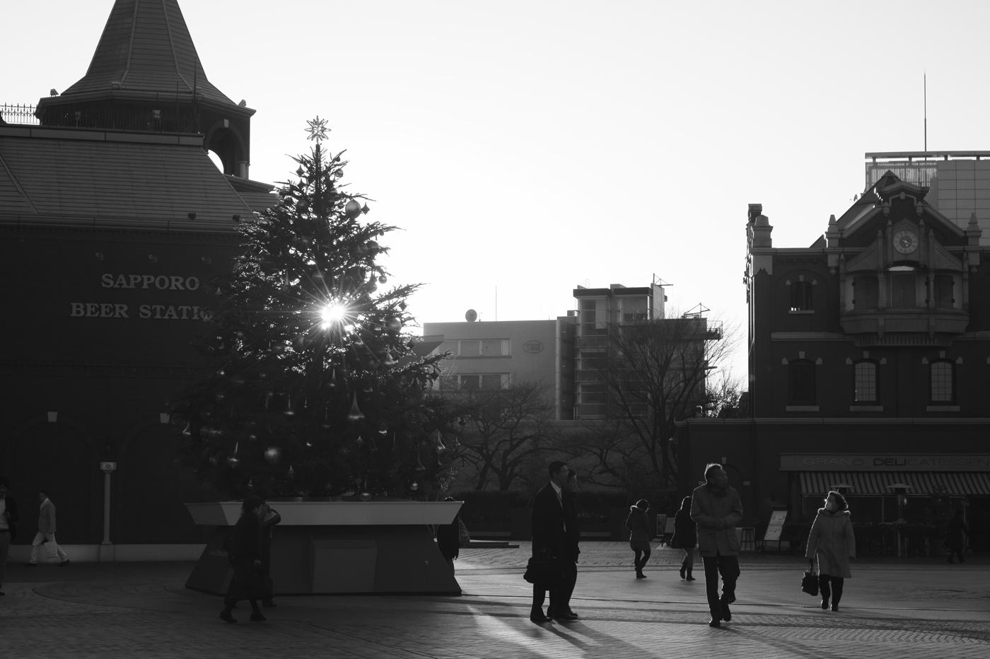 恵比寿のクリスマス。_c0120903_3572491.jpg
