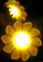 モノの価値や意義は何で決まるの?  希望の光、Little Sunの例_b0007805_10522090.jpg