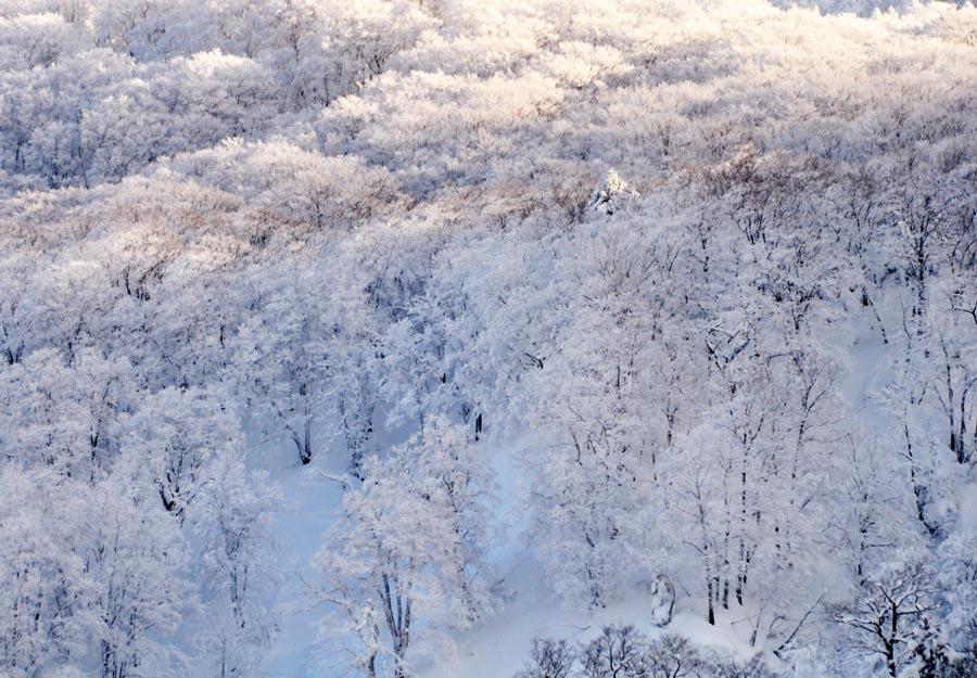 白い山肌_e0162117_18244340.jpg