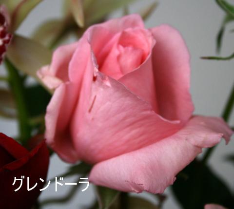 b0197433_1451678.jpg
