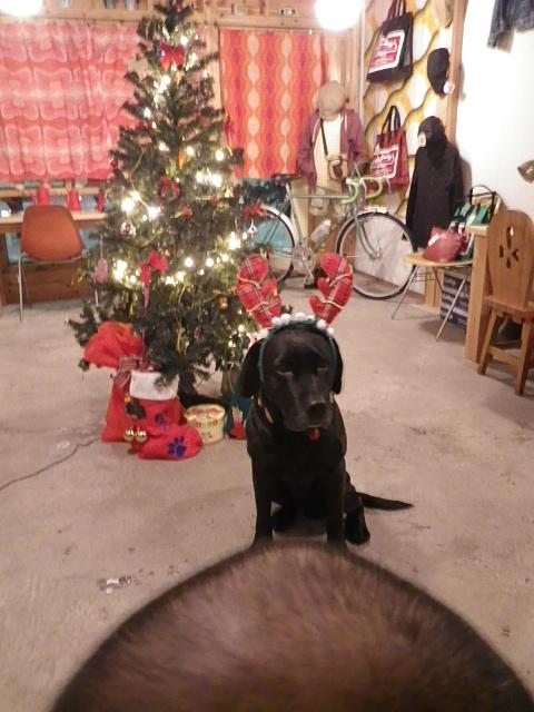 ☆クリスマスプレゼント☆_b0207642_18495494.jpg
