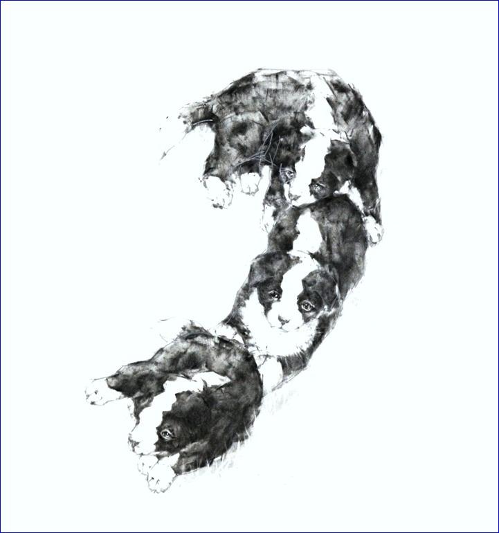 『 「わんこのはなこ」カレンダー 2013年・十月・十一月・十二月 』_f0159856_21212629.jpg
