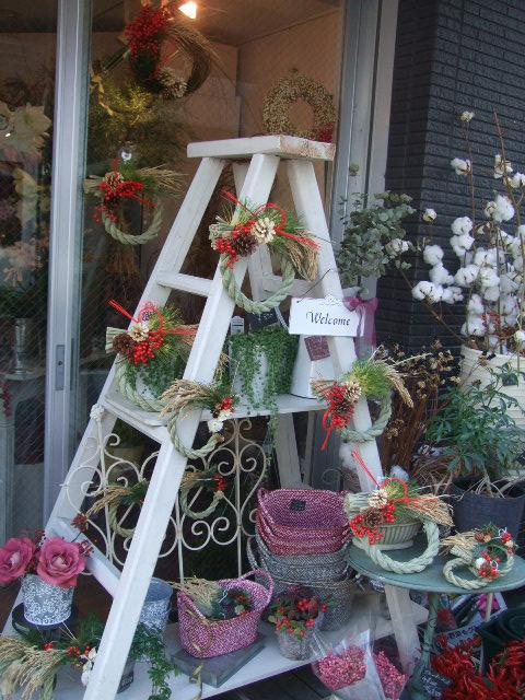 オークリーフ(お正月の花たち)_f0049672_1026428.jpg