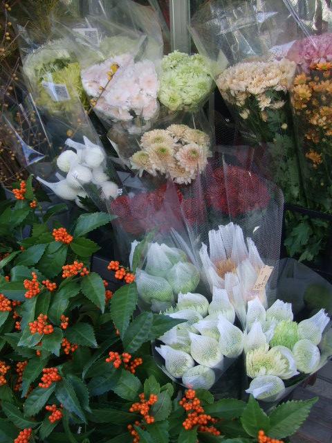オークリーフ(お正月の花たち)_f0049672_10313697.jpg