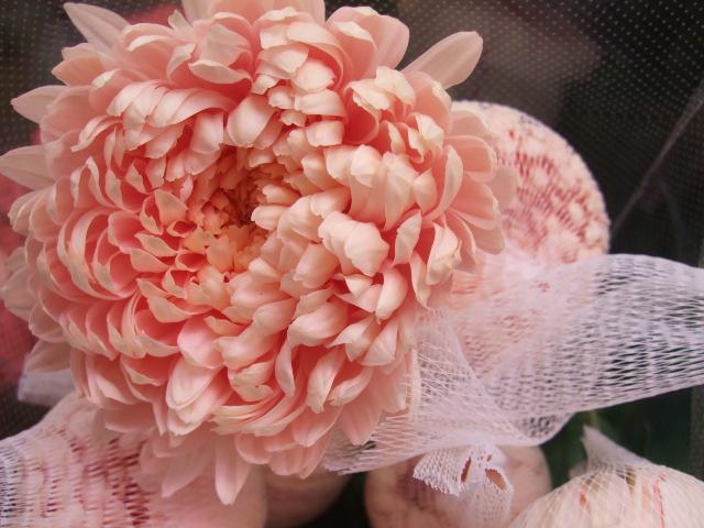 オークリーフ(お正月の花たち)_f0049672_1031786.jpg